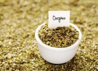 benefits of dried oregano